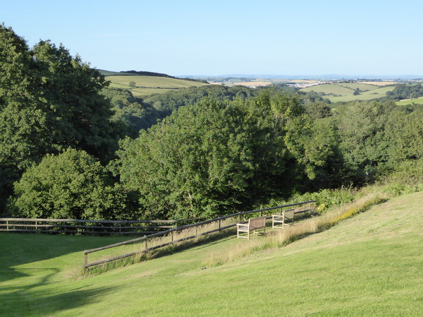 Sit and watch the birds at Robin Hill Farm Cottages North Devon